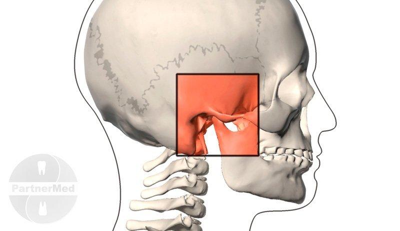 Лечение сустава челюсти в краснодарском крае повреждение сумочно-связочного аппарата коленного сустава